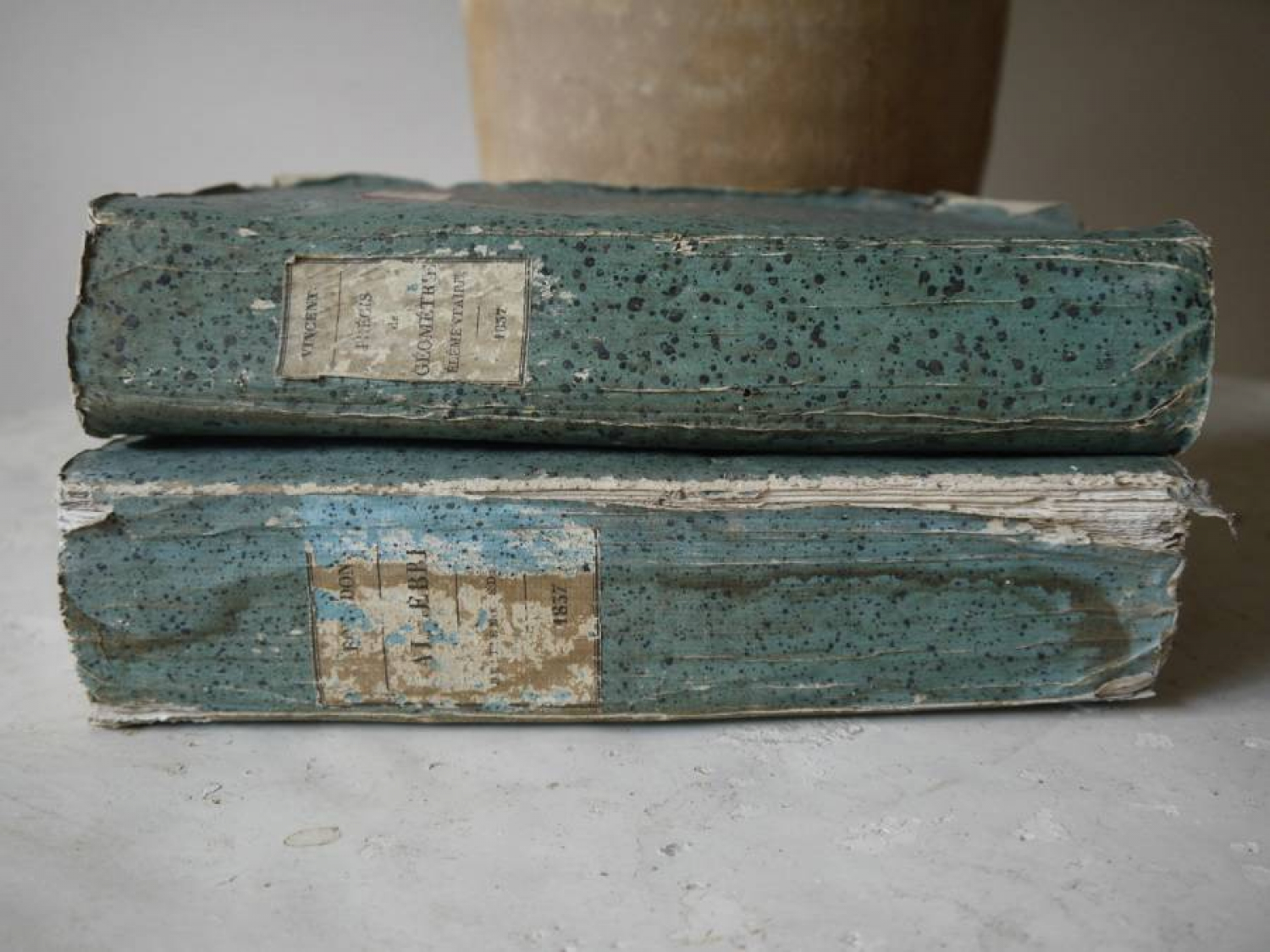 Pair of Blue Books