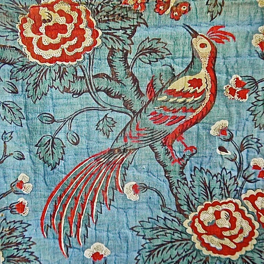 Indienne Bird Greetings Card